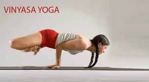 vinyasa yoga2101yogasan 101yogasan